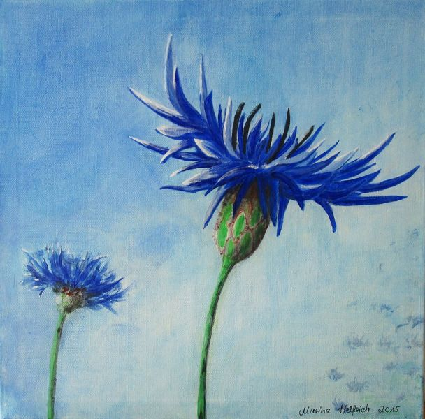 Blau, Natur, Kornblumen, Blumen, Malerei