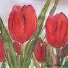 Blumen, Pflanzen, Tulpen, Rot