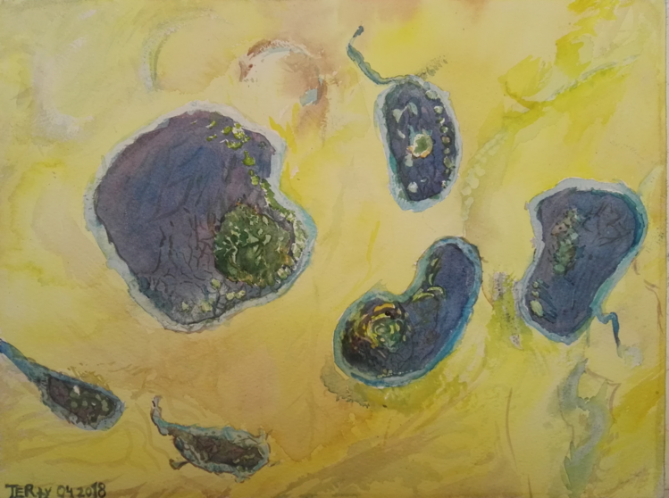 Zelle, Amöbe, Fantasie, Lila, Gelb, Mikroskop