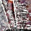 Maserung, Abstrakt, Rot schwarz, Bunt