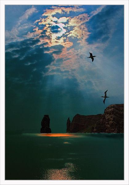 Felsen, Meer, Licht, Küste, Vogel, Leuchten