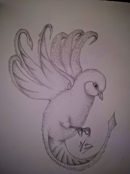 Bleistiftzeichnung, Zeichnung, Malerei, Vogel, Fantasie