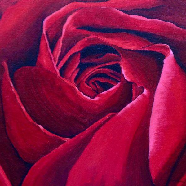 Rose, Rot, Malerei,