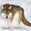Schamanismus, Weisheit, Wolf, Spirituell