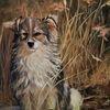 Natur, Ölmalerei, Hund, Malerei