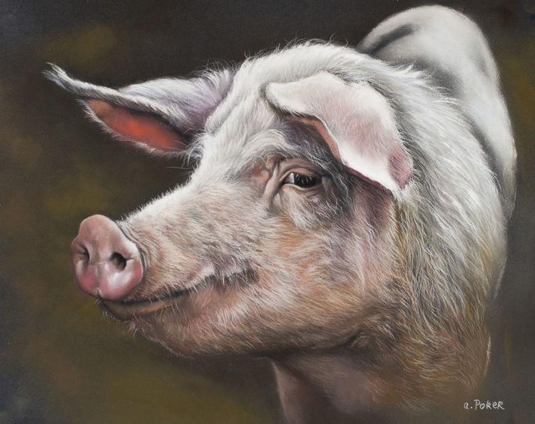 Schwein, Borste, Rüssel, Sau, Malerei, Namen