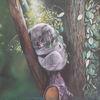 Australien, Eukalypthus, Tiere, Zweig