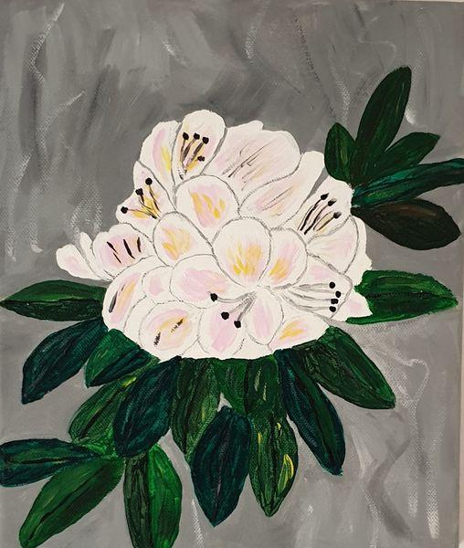 Hortensien, Atlantik, Blätter, Frankreich, Grün, Farben