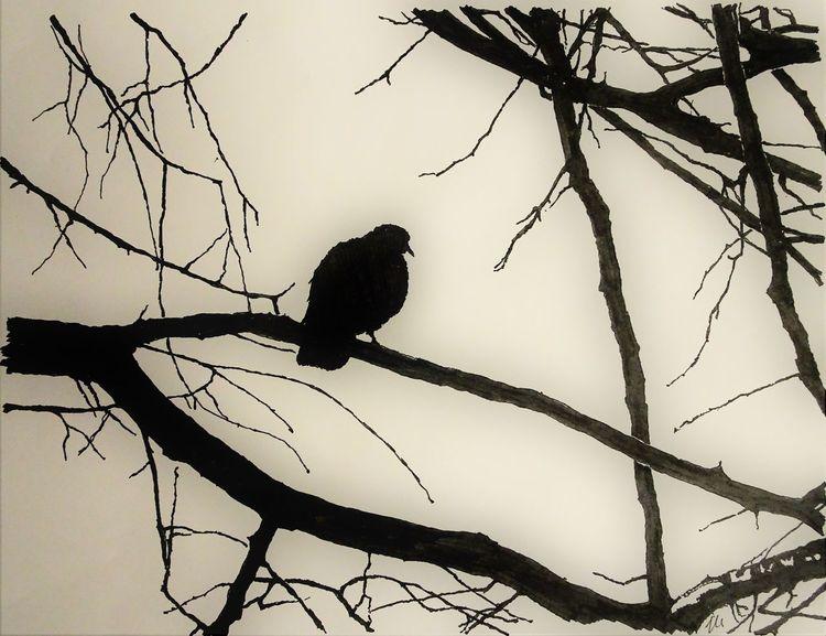 Himmel, Natur, Vogel, Monochrom, Zeichnungen, Winter