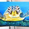 Meer, Meeresgrund, Tiere, Schildkröte