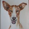 Buntstiftzeichnung, Hund, Lachen, Galgo