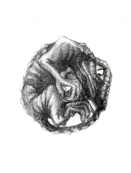 Zeichnung, Schuppen, Ei, Kind, Brandloch, Obscur