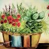 Stillleben, Malerei, Aquarellmalerei, Aquarell auf papier