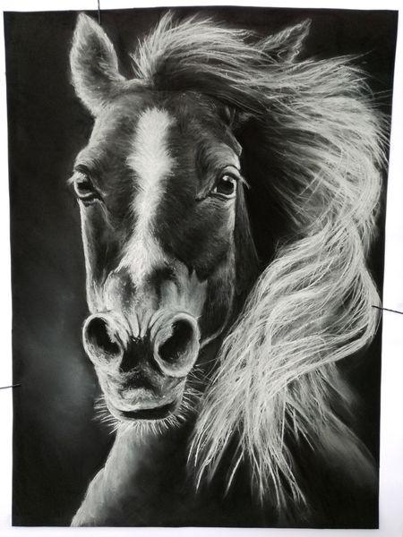 Pferde, Weiß, Liebe, Freiheit, Schwarz, Pastellmalerei