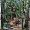 Waldweg, Sonne, Baum, Wald