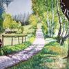 Aquarellmalerei, Birken, Wiese, Landschaft