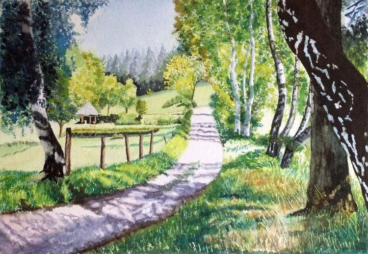 Wiese, Aquarellmalerei, Birken, Landschaft, Weg, Licht