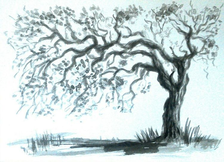 Zeichnung, Zeichnungen landschaften, Baum, Weiß, Tuschmalerei, Natur