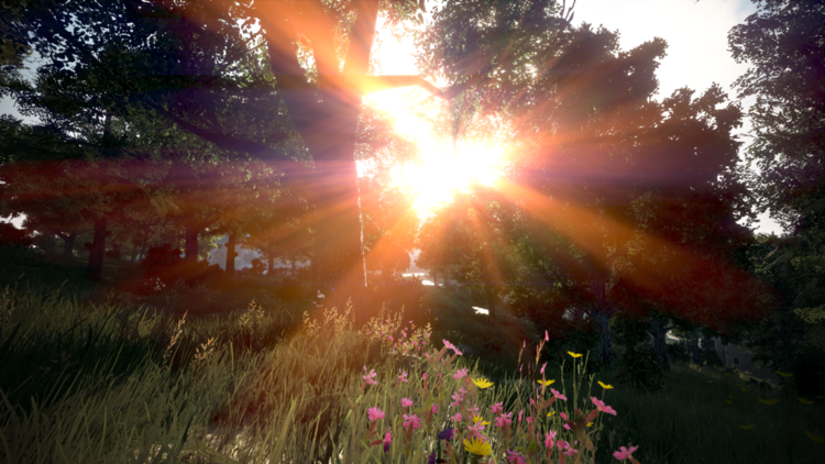 Digitale fotografie, Sonnenuntergang, Virtuell, Fotografie, Natur, Digitale kunst