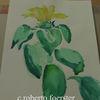 Pflanzen, Blumen, Aquarellmalerei, Aquarell