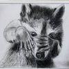 Waschbär, Scham, Tiere, Zeichnungen