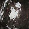 Tierleid, Schwarzer rabe, Unglück, Zeichnungen