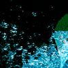 Blau, Wasser, Minzblätter, Digitale kunst