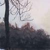 Landschaft, Herbst, Gouachemalerei, Natur