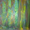 Wald, Fantasie, Urwald, Landschaft