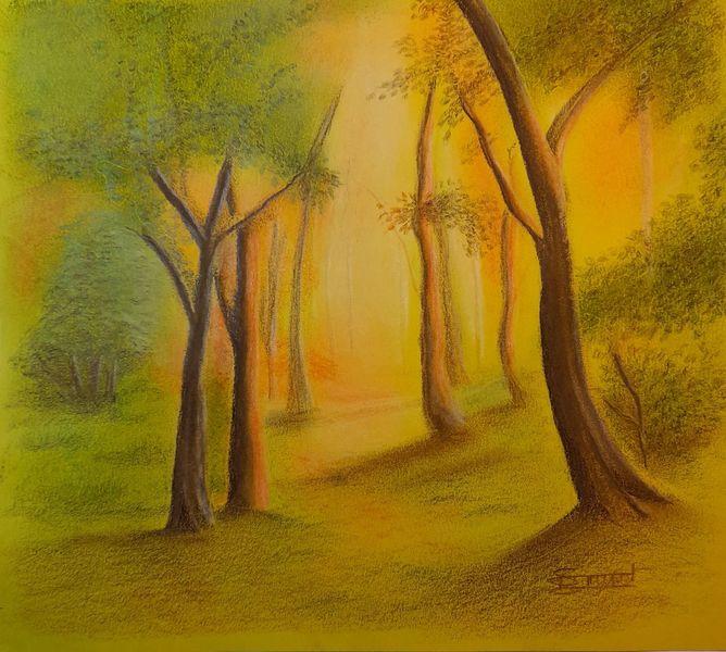 Lichtung, Herbst, Wald, Zeichnungen