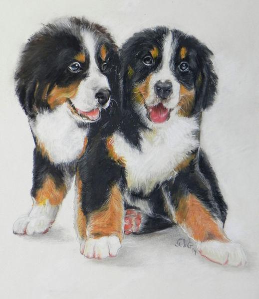 Tierportrait, Pastellmalerei, Zwillinge, Hund, Hundeportrait, Freunde