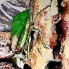 Rost, Insekten, Fenstereck, Ruine