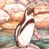 Pastellmalerei, Natur, Weltvogelpark walsrode, Tiere