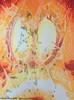 Aquarellmalerei, Malerei, Abstrakt, Begegnung