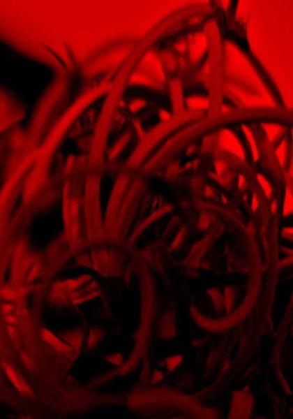 Monochrom, Abstrakt, Kunstfotografie, Makroaufnahme, Kunstwerk, Fotografie