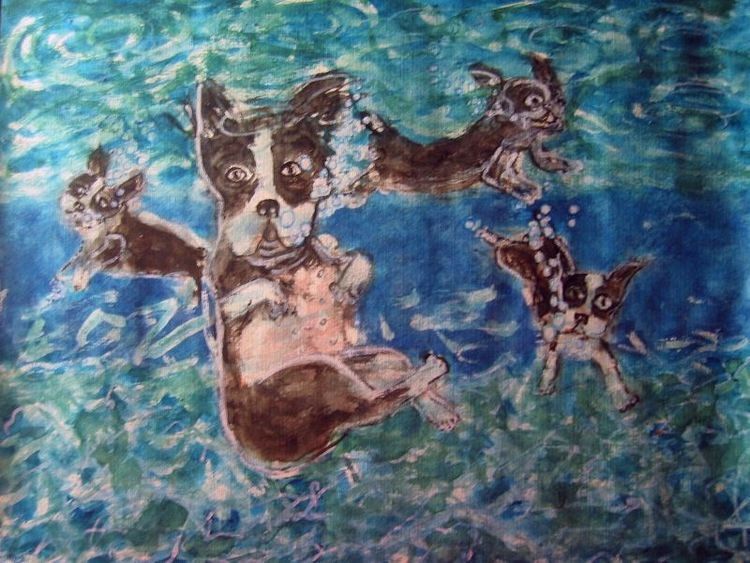 Hund, Aquarellmalerei, Boston terrier, Aquarell, Terrier,