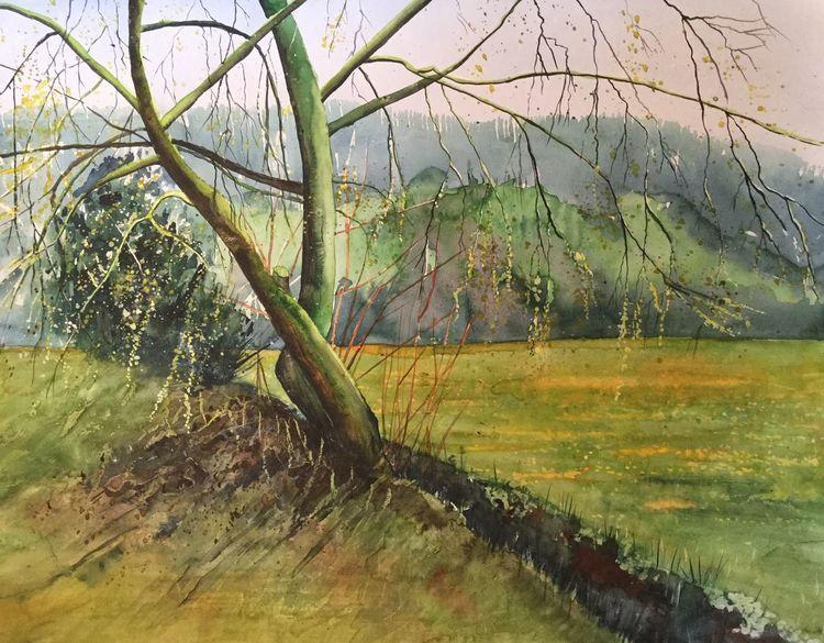 Frühling, Wiese, Luzern, Baum, Aquarellmalerei, Weide