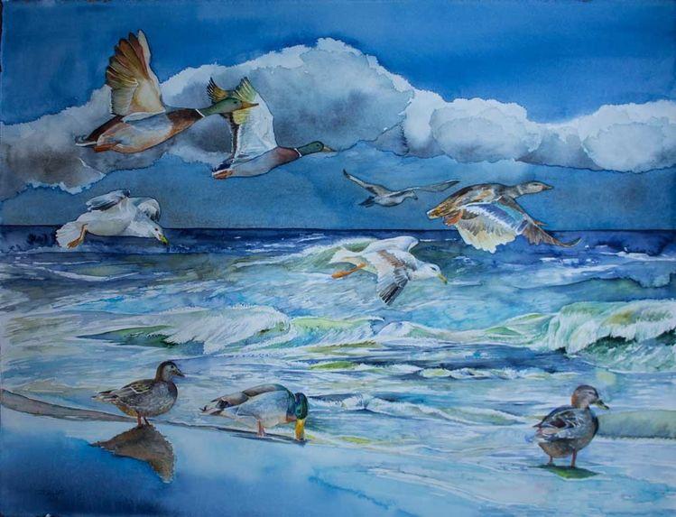 Ente, Ostsee, Aquarellmalerei, Möwen aquarell, Welle, Maritimes aquarell
