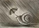 Schneckche, Schneckchen, Regen, Schutz