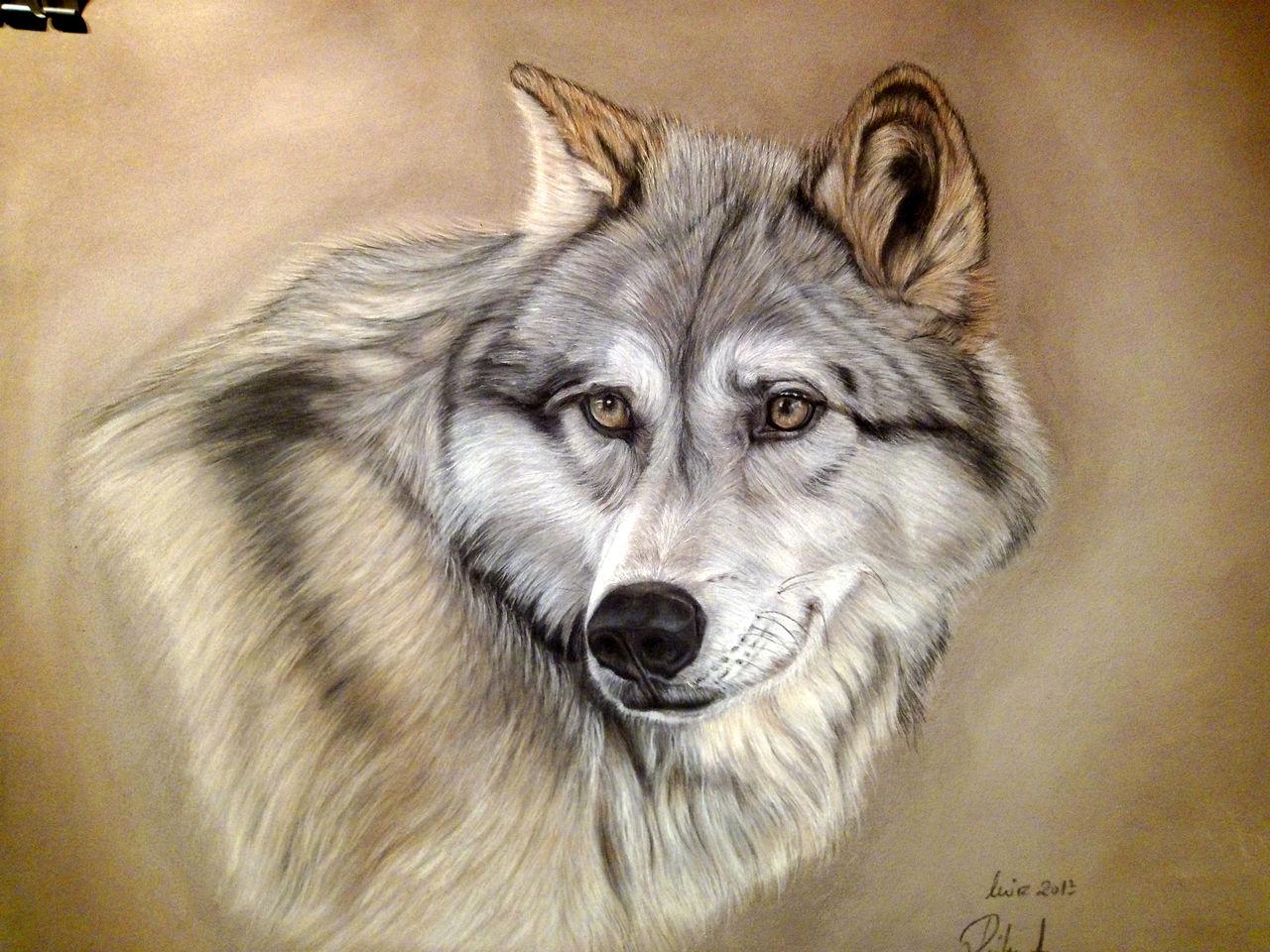 Bild wolf malerei tiere von anastazija r hlemann bei for Vorlagen malerei