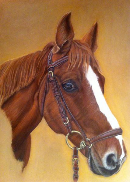 Malerei, Pferde, Pastellmalerei, Tiere