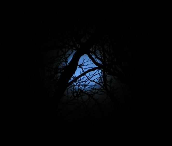 Mond, Blau, Fotografie