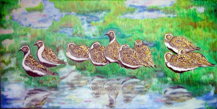 Goldregenpfeifer, Wasser, Wiese, Ölmalerei, Vogel, Malerei