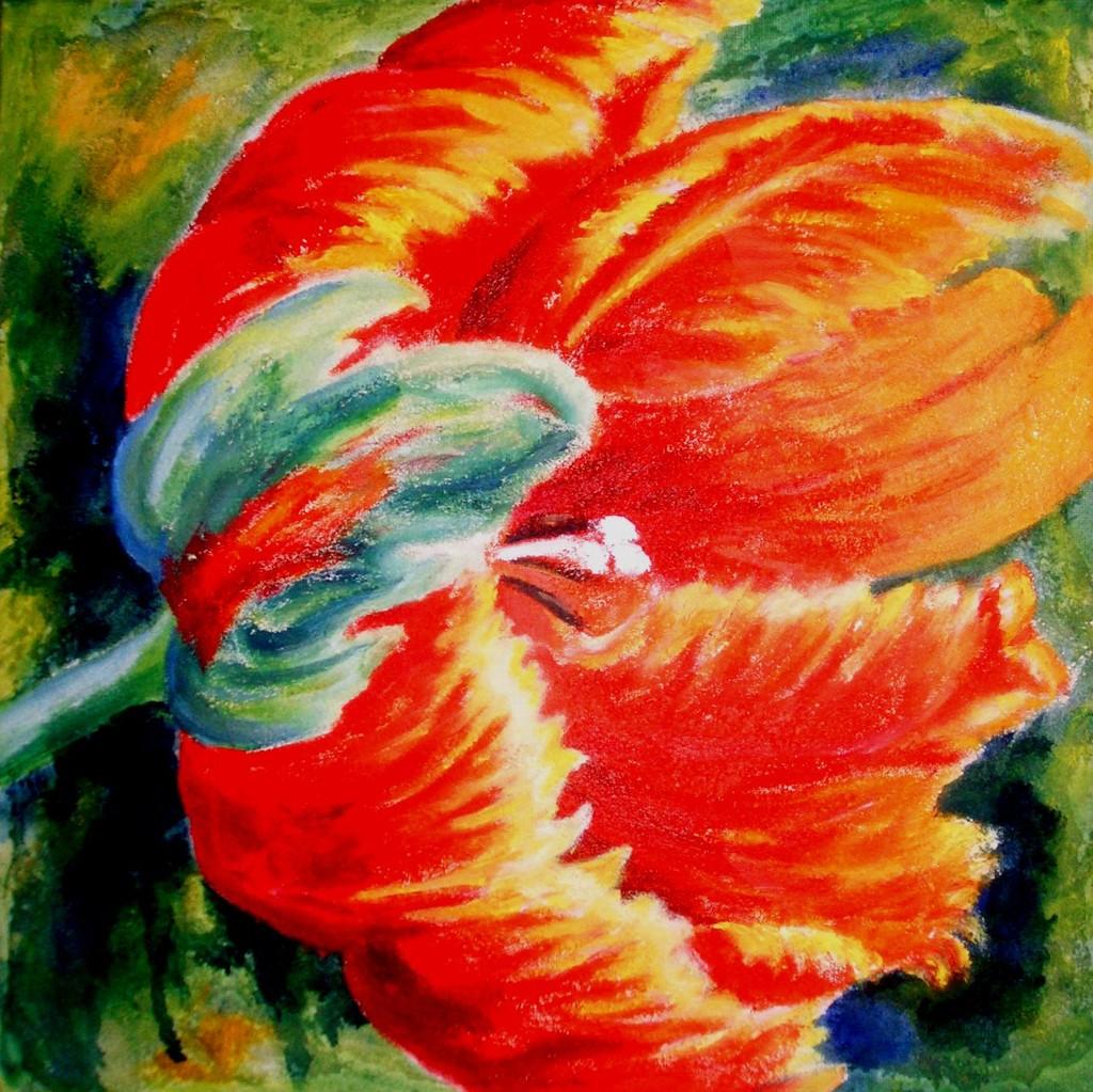 papageientulpe  bild  kunst von ulrike sallóssohns bei