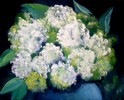 Blumen, Blüte, Hortensien, Malerei