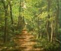 Zeichnungen, Wald