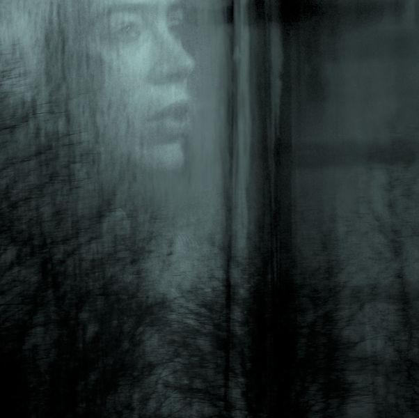 Gesicht, Fenster, Profil, Baum, Blick, Schatten