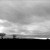 Himmel, Weite, Landschaft, Baum