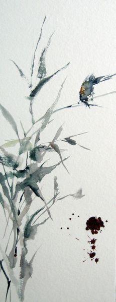 Pflanzen, Tiere, Aquarellmalerei, Aquarell, Morgentau