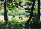 Sonne, Acrylmalerei, Landschaft, Pferde